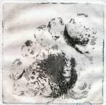 Impronta, acquaforte su zinco, 2000
